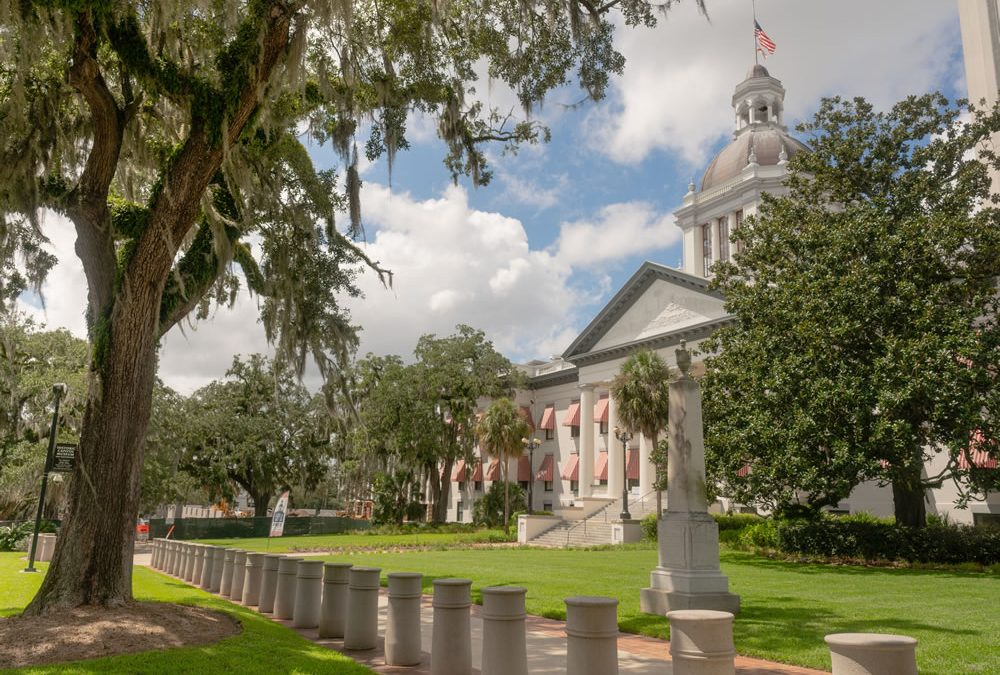 Important Post Election Updates – Florida Legislative Amendments, November 3rd 2020.