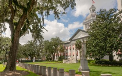 Important Post Election Updates – Florida Legislative Amendments, November 3rd 2020.